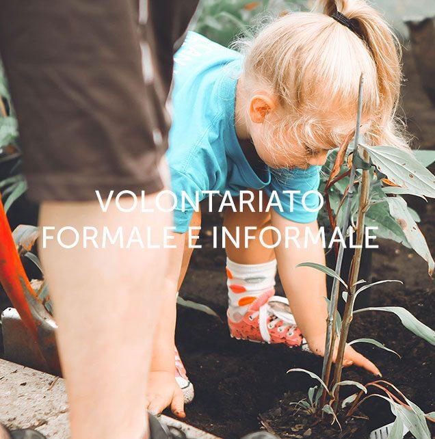 Voce-e_Volontariato-q